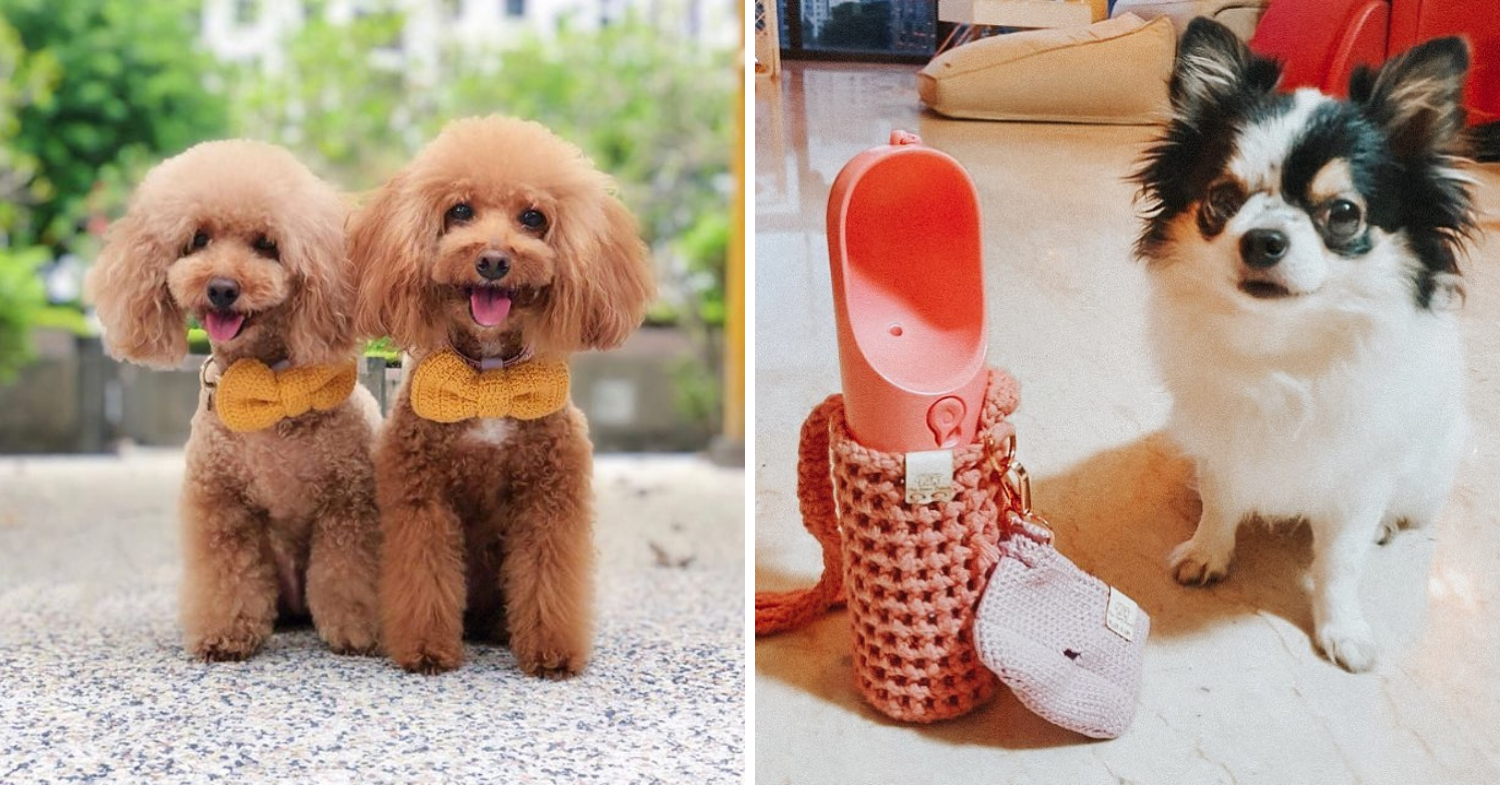 Pet accessories Singapore - The Yarn Pooch