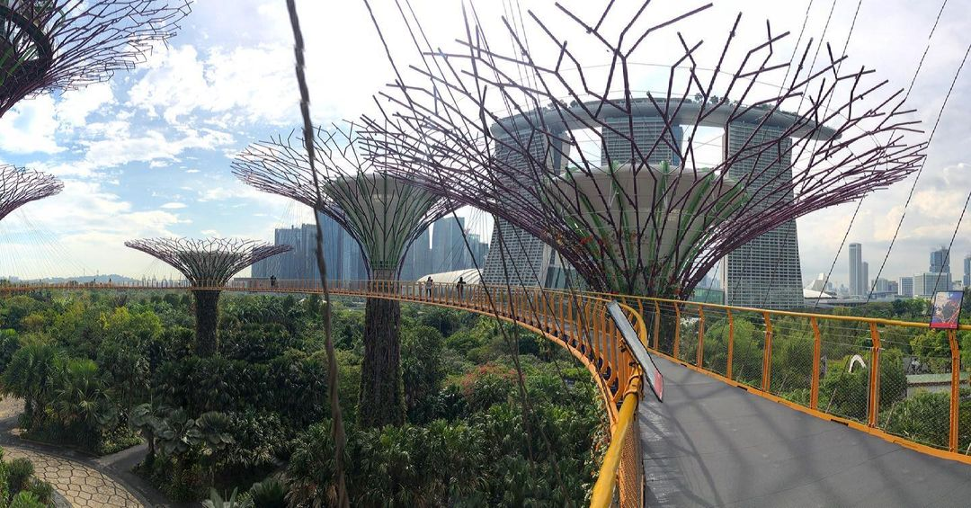 OCBC Skyway Gardens by the Bay