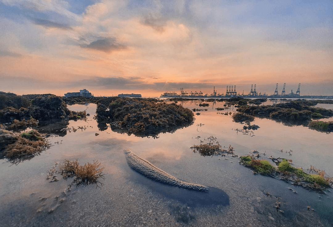 Tanjong Rimau Beach - Sunset