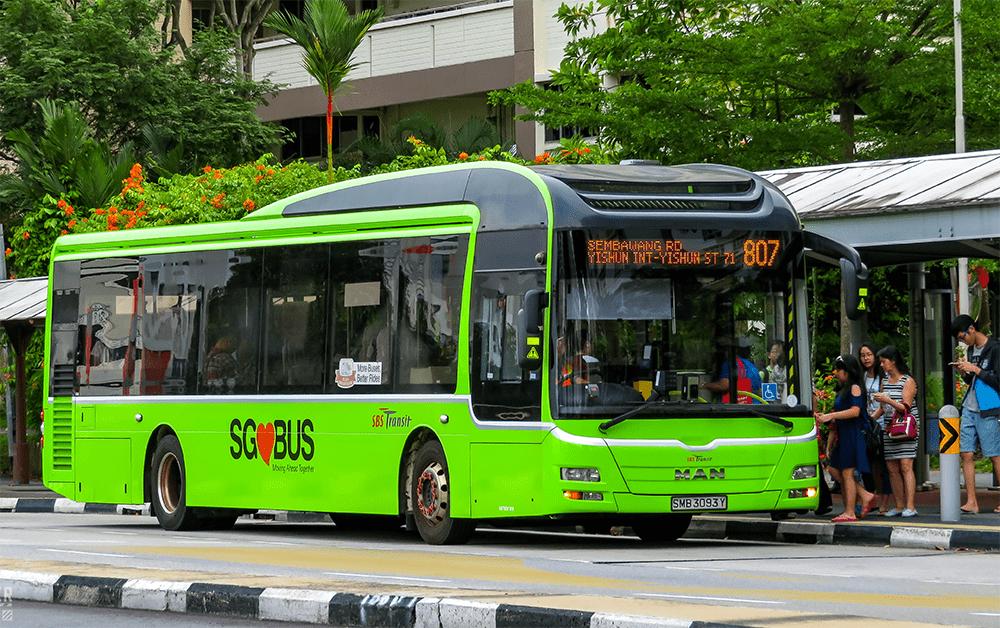 Singapore Bus Green SBS