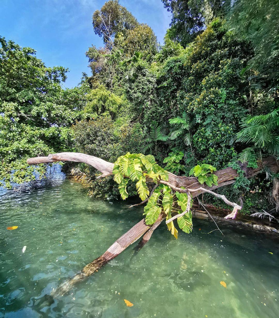 bukit chermin boardwalk - high tide