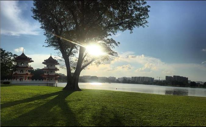 jurong-lake-garden