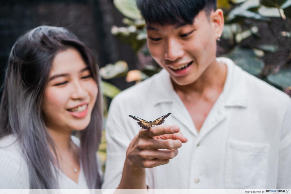 science centre singapore 2021 - butterflies up-close butterfly park