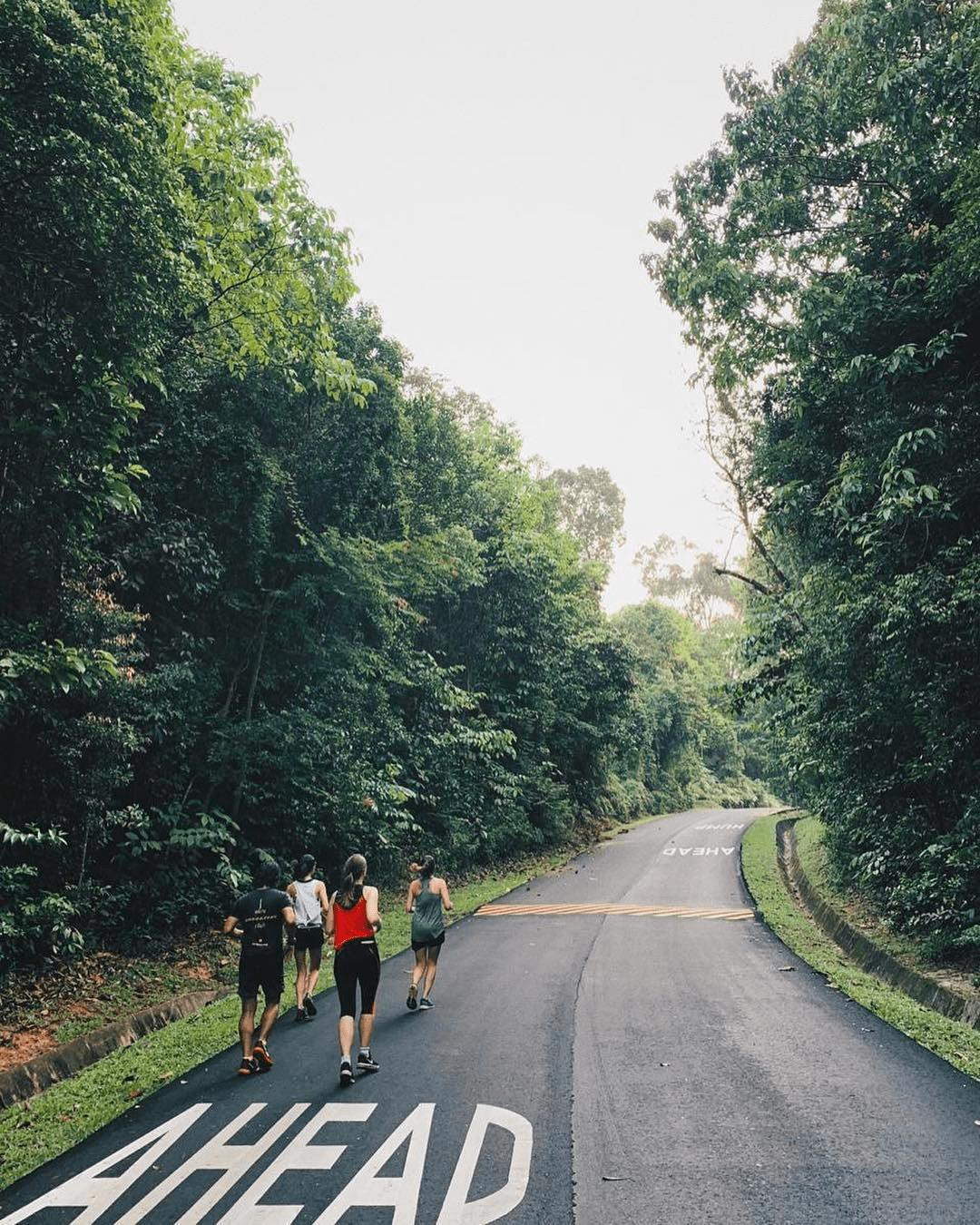 devils bend road - joggers