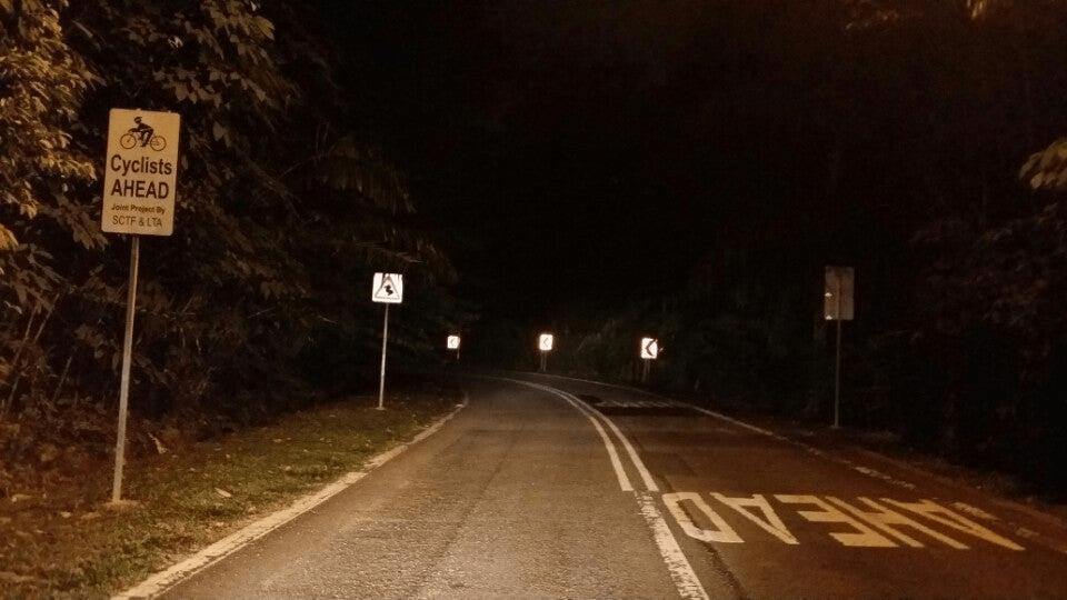 devils bend road - night road