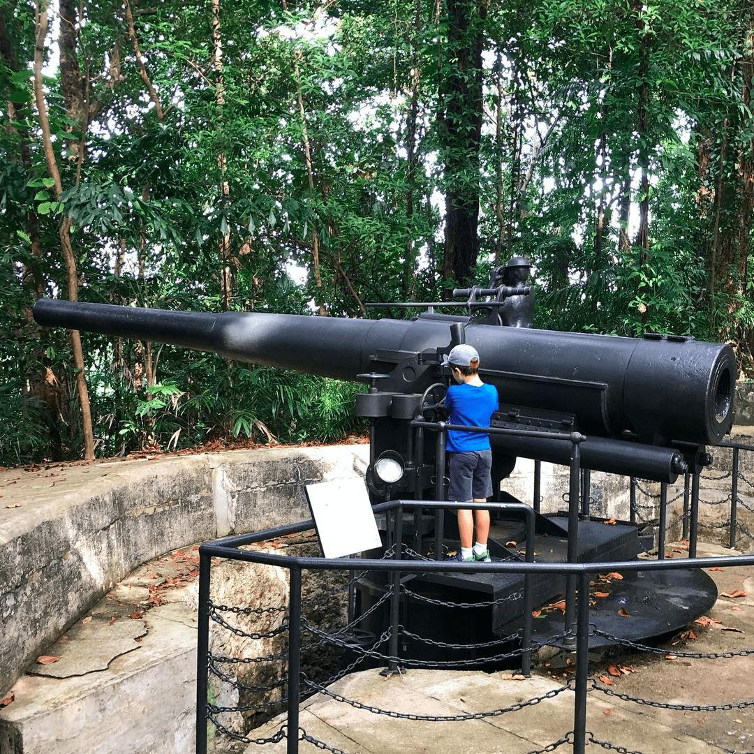 labrador park - gun replica