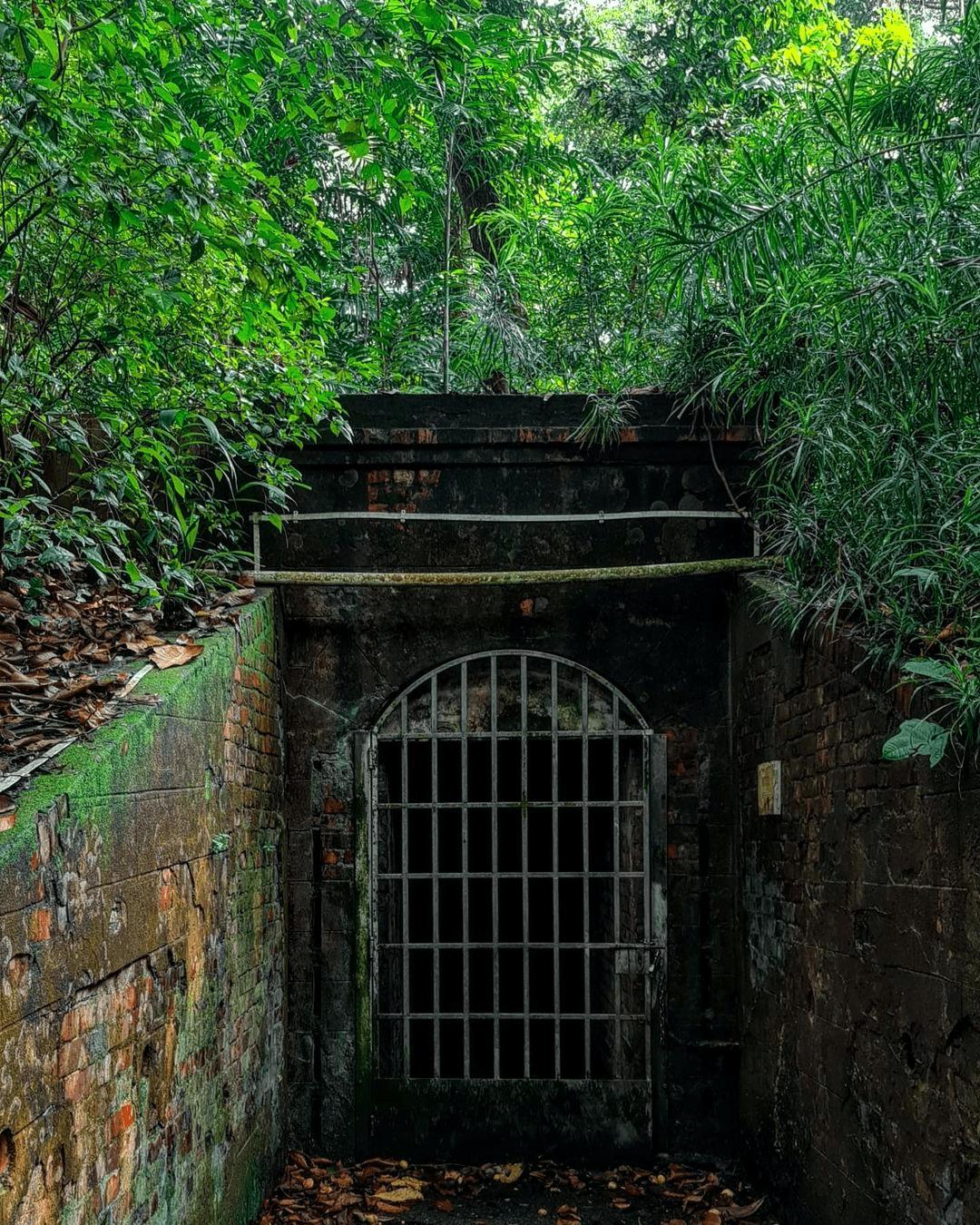 labrador park - tunnels