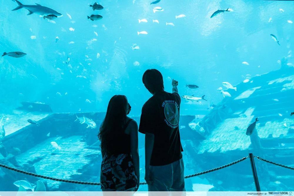 Sentosa SRV - SEA Aquarium