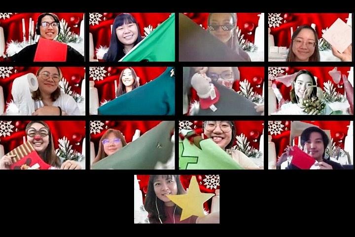 Zoom Photoshoot Christmas