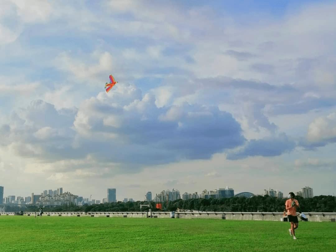 Bay East Garden - Kite