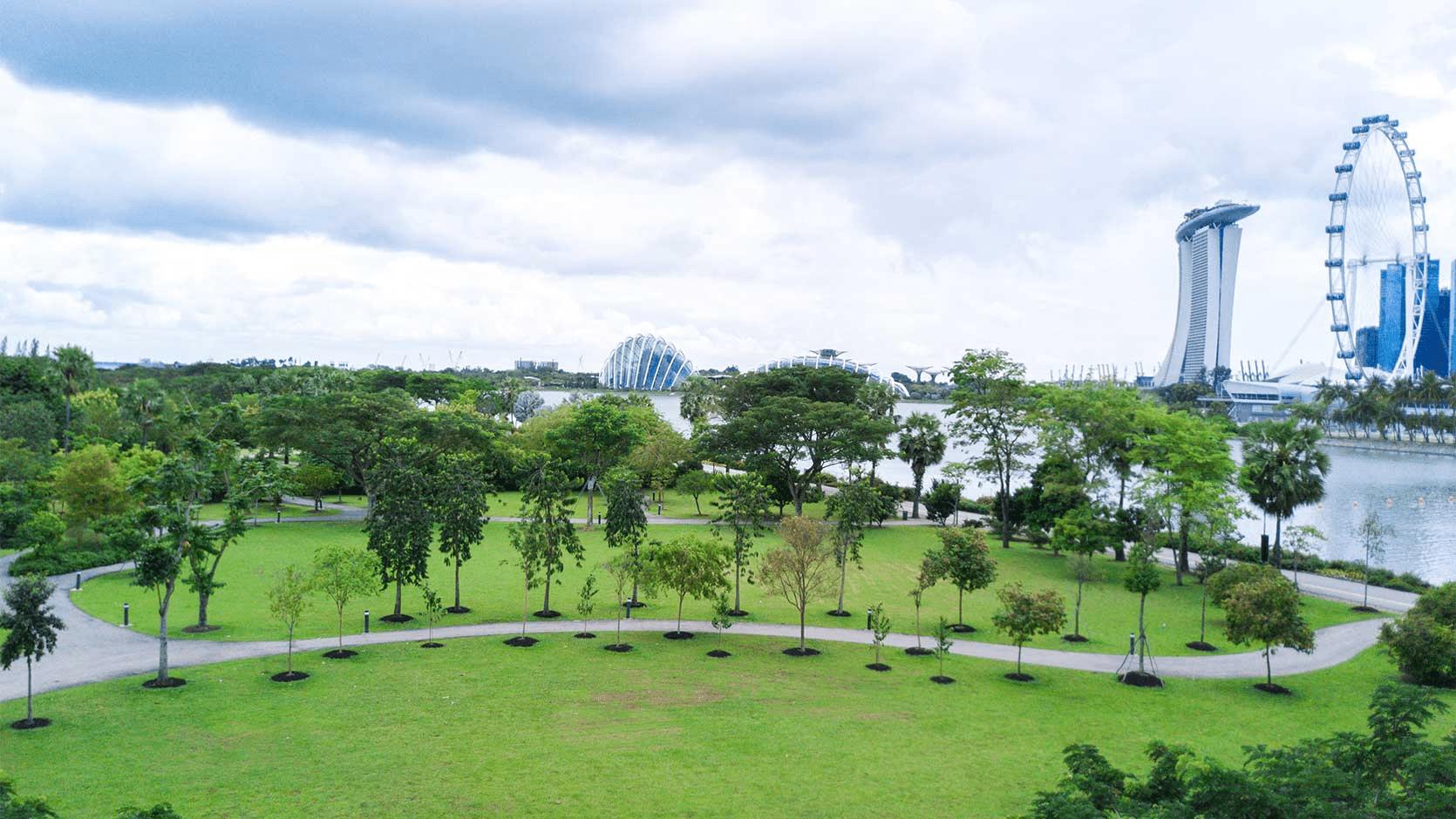 Bay East Garden - Open Spaces