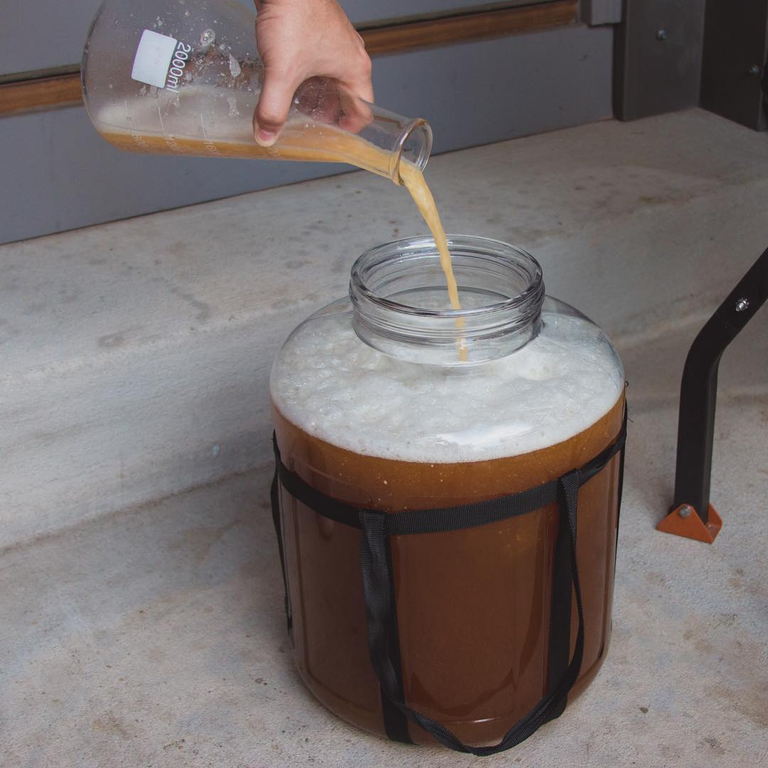 home brewing beer singapore - yeast