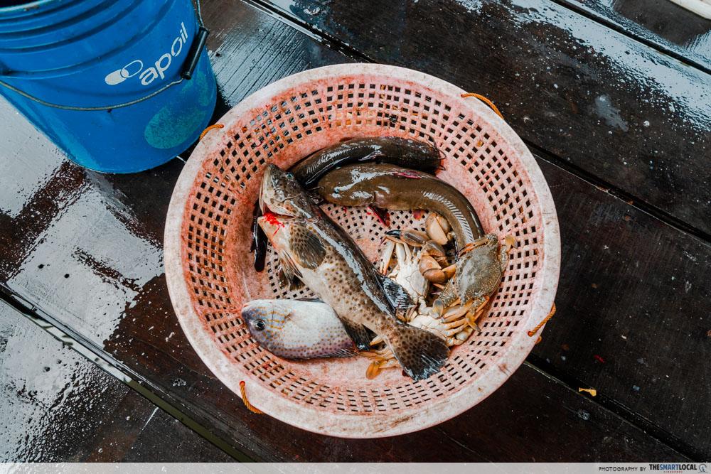 singapore's last fishing village