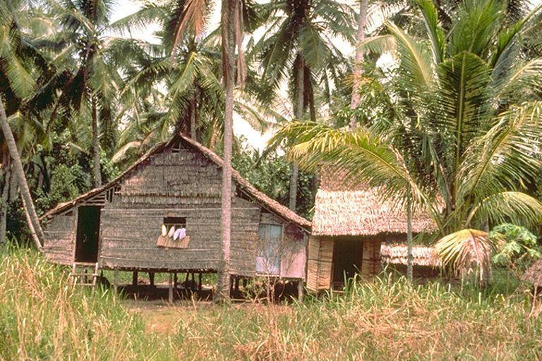 pulau tekong kampung