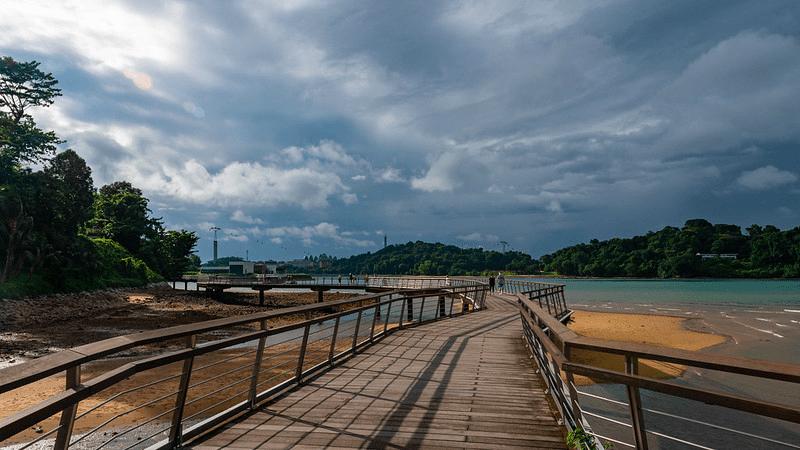 labrador park - boardwalk
