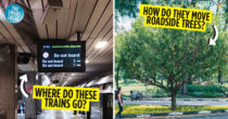 11 Mind-Boggling Mysteries Of Singapore Finally Solved