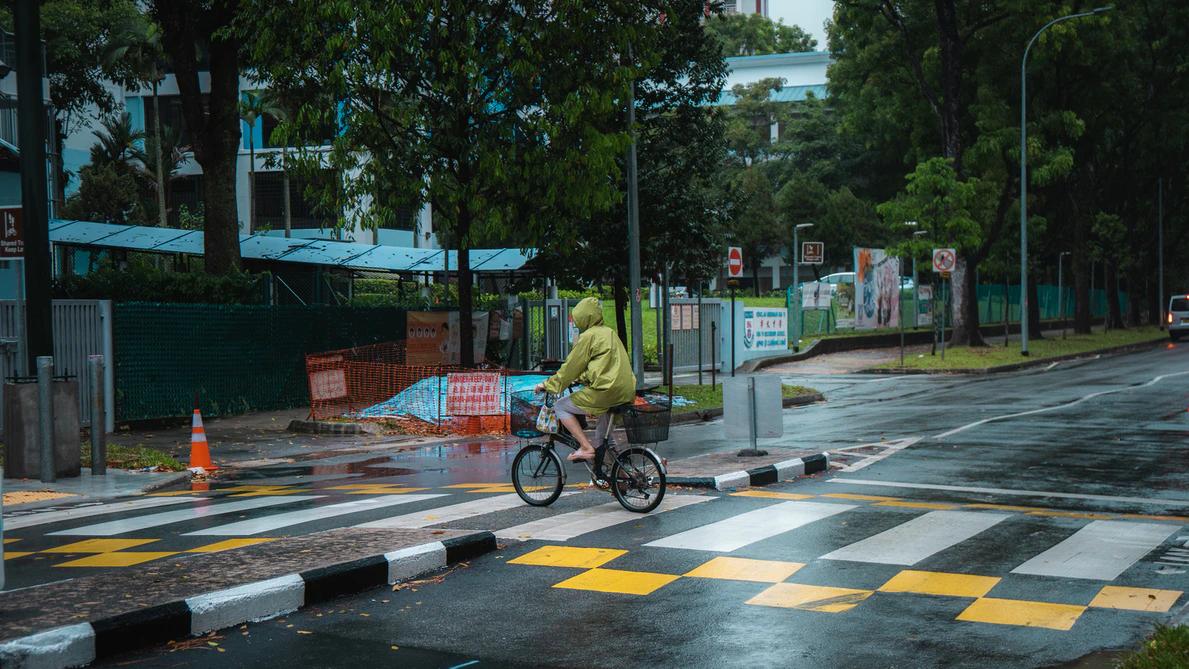 cycling on zebra crossing