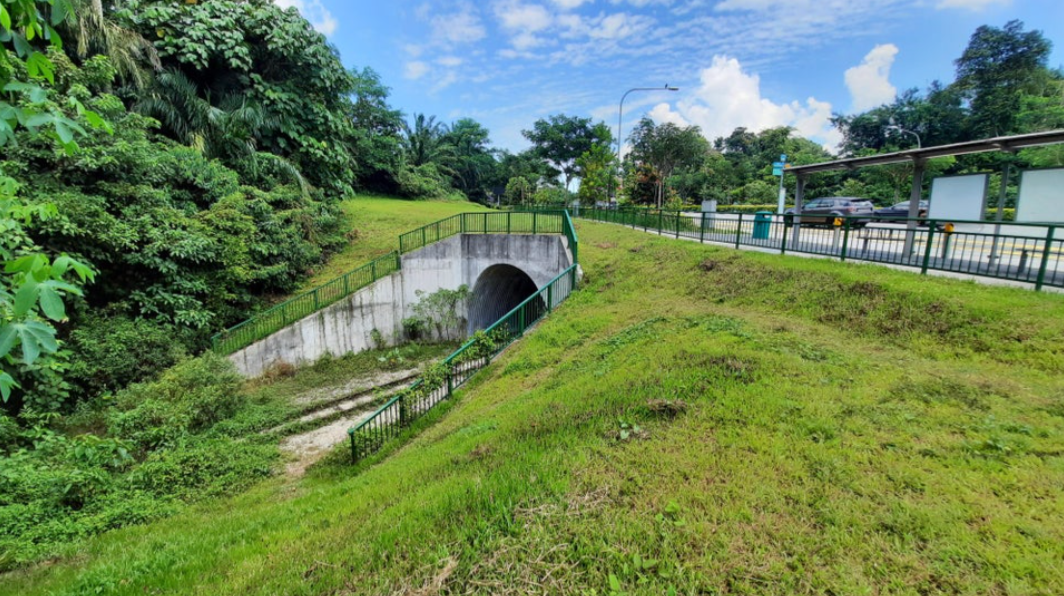 Maju Forest tunnel entrance clementi road