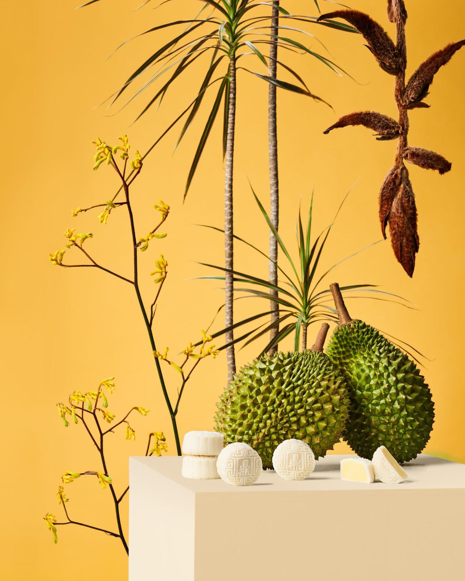 Mooncake Boxes 2021 to Repurpose - Ding Mooncake Durian Snowskin