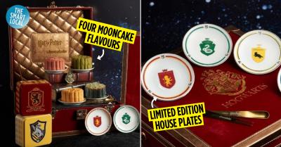 harry potter mooncakes