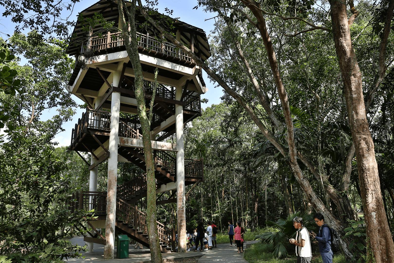 ghost hunting - birdwatcher tower