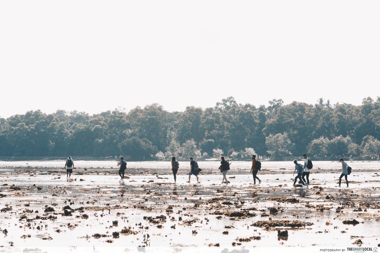 Pulau Semakau
