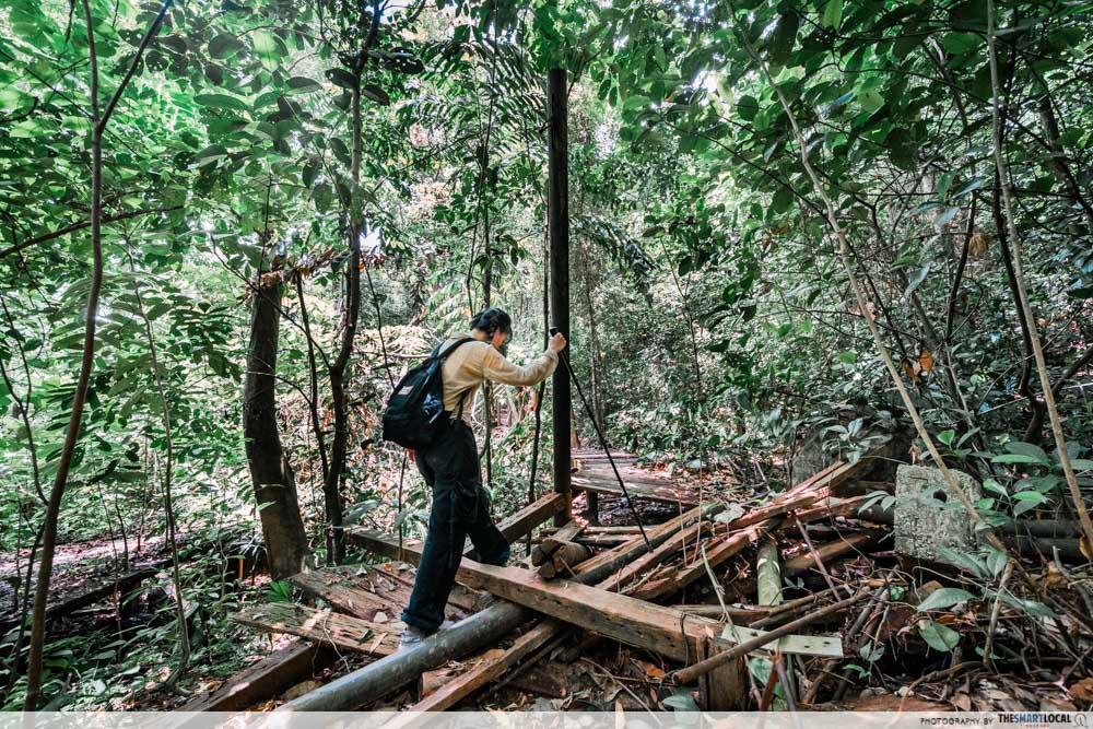 abandoned hiking trails singapore