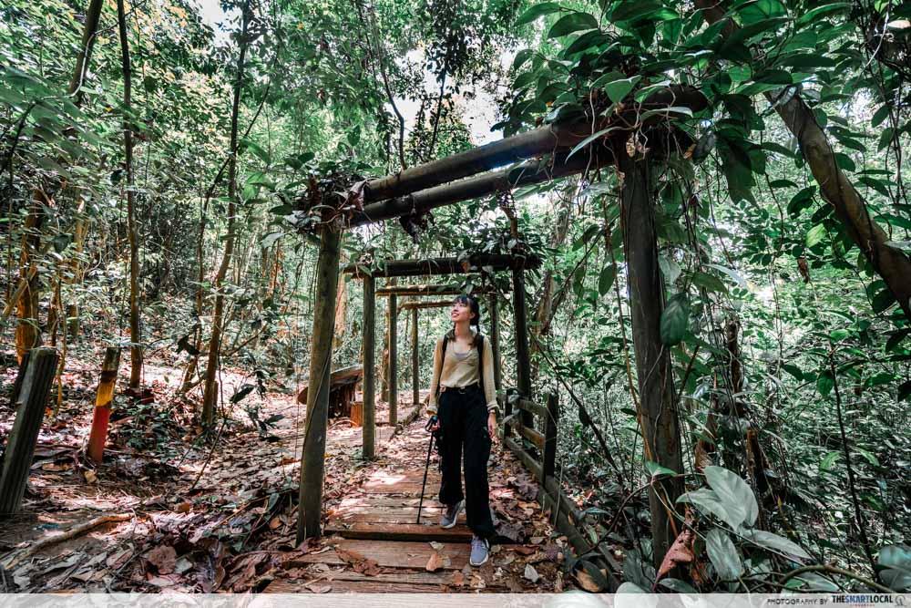 bukit batok hillside park - torii gates