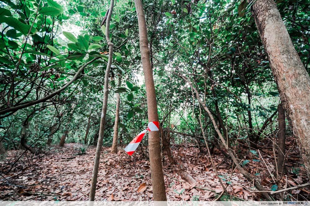 bukit batok hillside park - trail markers