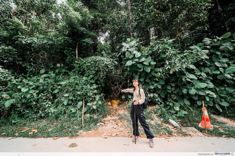 entrance 1 singapore hiking