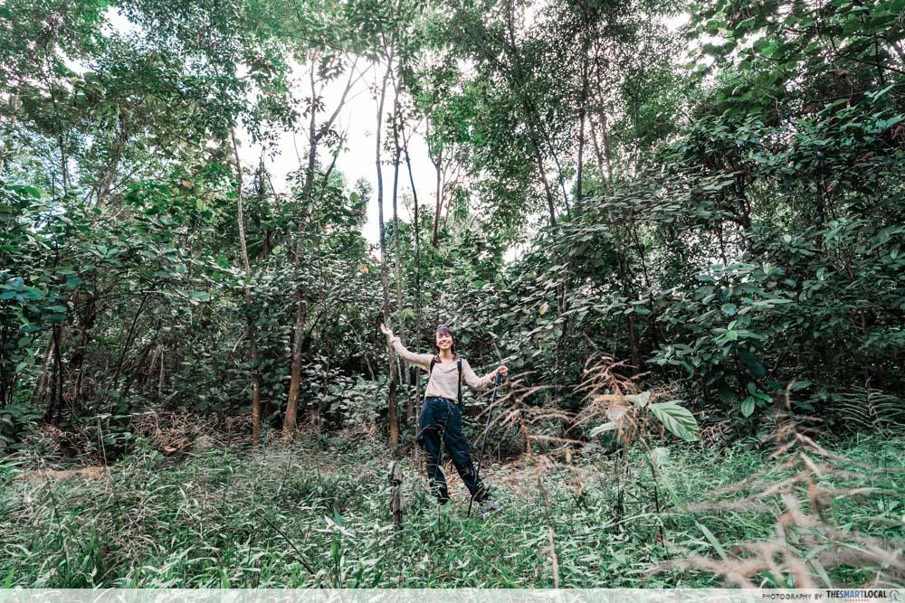 bukit batok hillside park