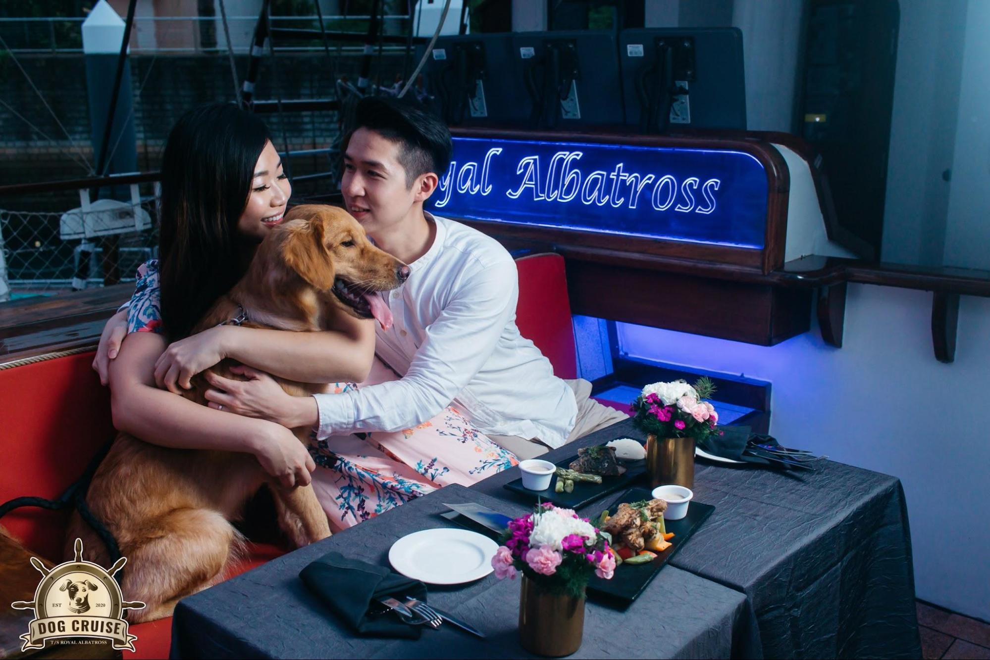 luxury activities singapore - royal albatross dog cruise