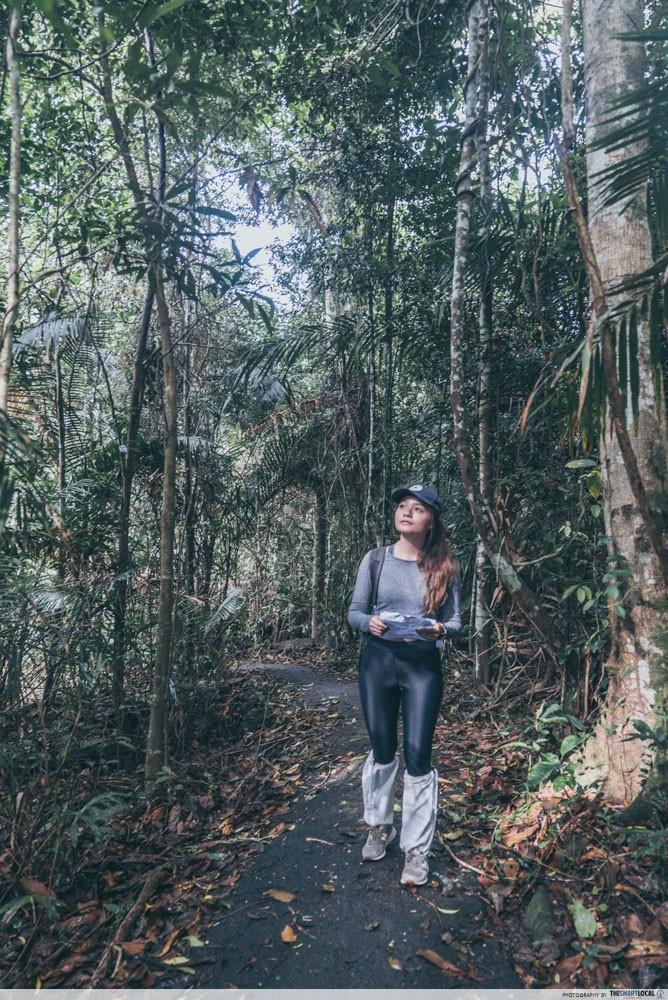 thailand national park dawn trek