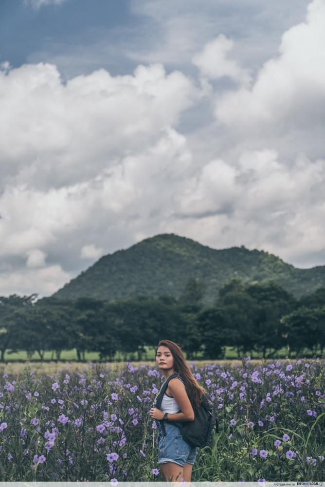 farm chokchai clouds and field